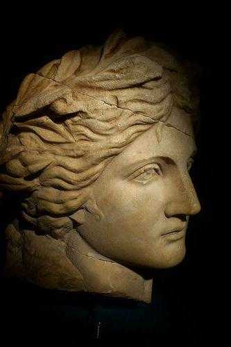 римский нос у мужчин фото ставрополе